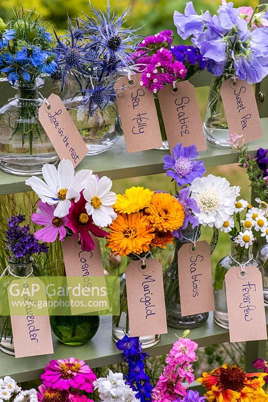 Glass jars and bottles filled with cut flowers grown in the garden. Pictured from left to right - love-in-the mist, sea holly, statice, sweet pea, lavender, cosmos, marigold, scabious, feverfew.