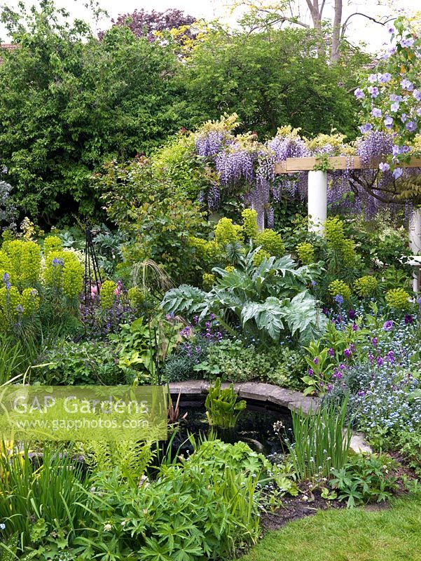 Small town garden. Circular pergola glimpsed across pond and spring bed of erysimum, tulip, forget-me-not, abutilon,  cardoon, euphorbia, camassia, aquilegia.