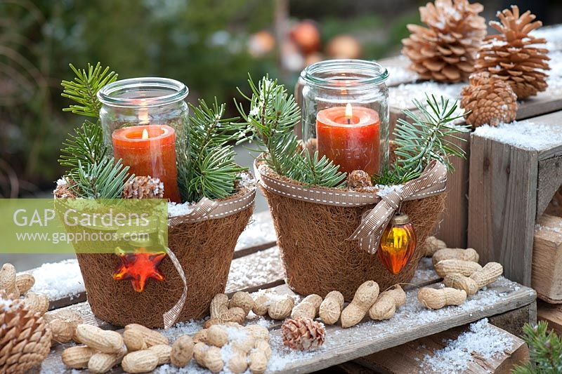 Jars as lanterns in decorative pots with branches of Abies - fir, cones and tree decorations, peanuts in shells
