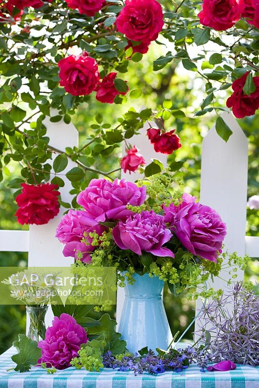 Gap Gardens Cut Flower Arrangement With Jug Of Peony And