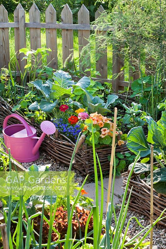 Wicker raised bed with annuals to attract beneficial animals. Zinnia 'Thumbelina', Lobelia erinus, Tropaeolum majus