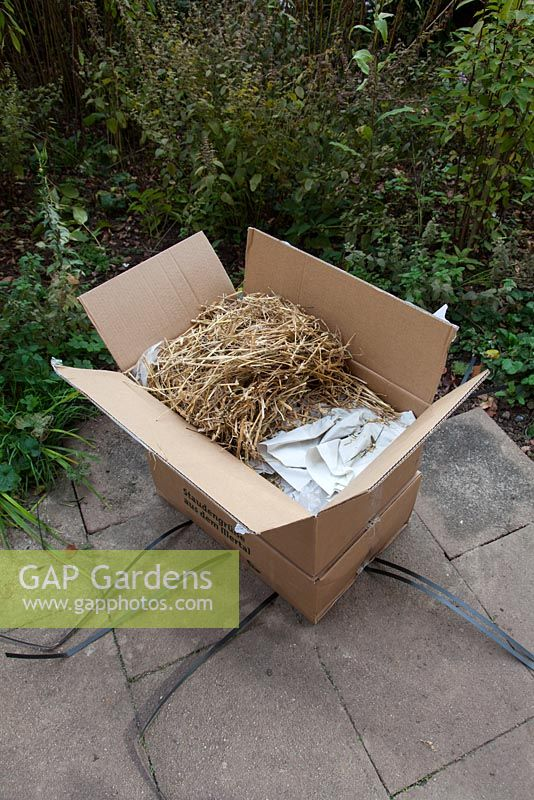 Order via internet and delivery of perennials, October, Stuttgart, Germany