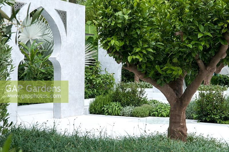 GAP Gardens - The Beauty of Islam, a garden that reflects Arabic and ...