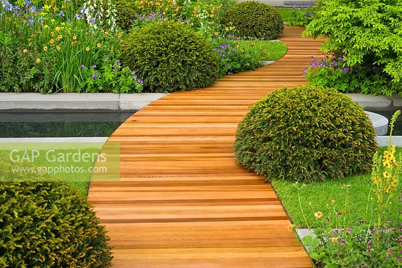 A Winding Path Of Cedar Wood Strips Running Over A Water Pool And Between  Evergreen Topiary Domes Of Taxus Baccata   Yew. The Homebase Urban Retreat  Garden, ...