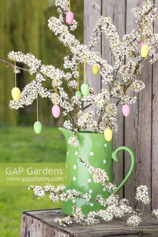 Decorative eggs hanging from blossoming spring foliage, in a green polkadot jug