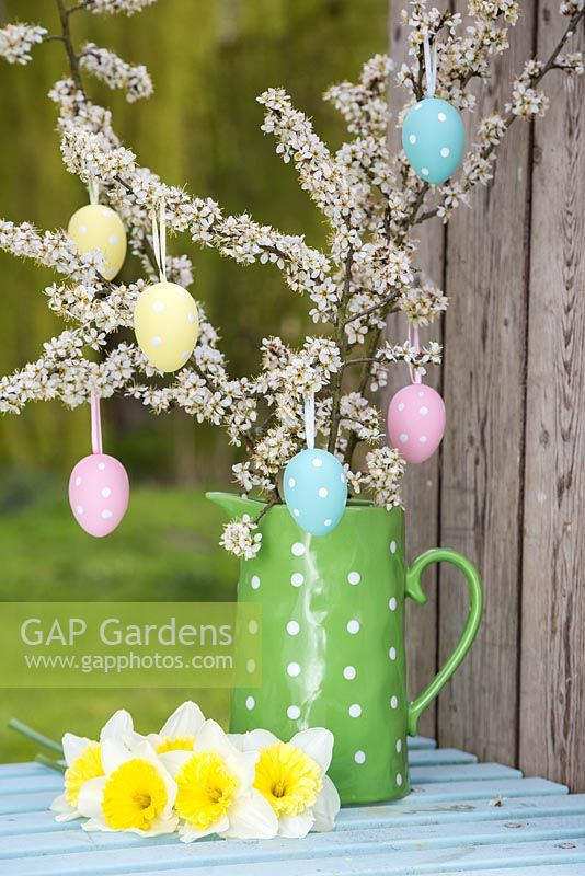 Decorative eggs hanging from blossoming spring foliage in a green polkadot jug, accompanied with Daffodils