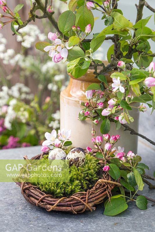 Quail eggs sat on moss within a woven willow wreath, accompanied with a pot of blossoming spring foliage