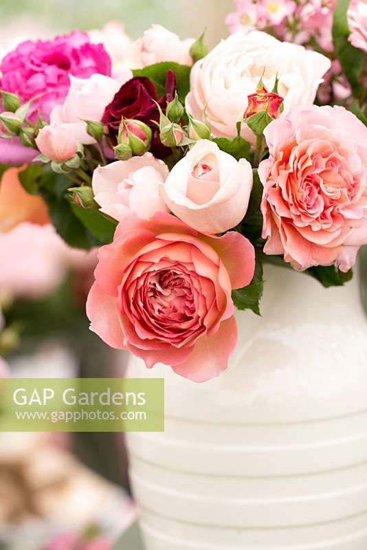 Floral display of roses in a white jug