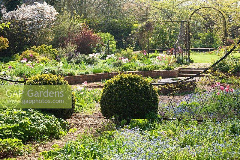 gap photos - garden  u0026 plant picture library - gap photos