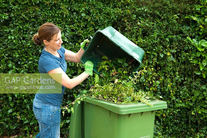 Woman working in the garden collecting green waste for recycling