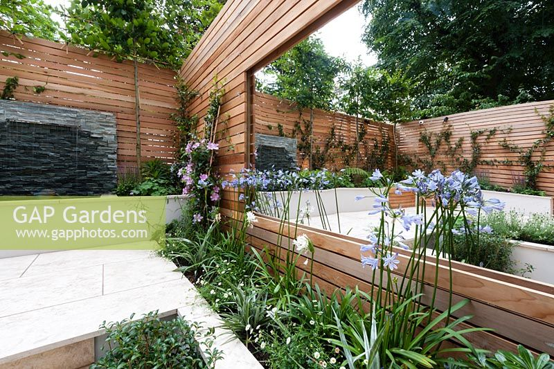 Red cedar wall screen, slate water feature, Sofia limestone paving. Clematis,'Nelly Moser', Agapanthus africanus, Agapanthus africanus Alba, Erigeron karvinskianus