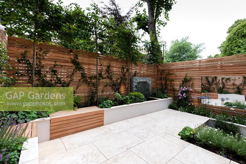 Red cedar wall screen and bench, slate water feature, Sofia limestone paving. Carpinus betulus pleached, Trachelopermum jasminoides, Salvia 'Caradonna', Clematis 'Nelly Moser', Agapanthus africanus, Agapanthus africanus 'Alba', Erigeron karvinskiansus, Lavendula augustifolia 'Arctic Snow'