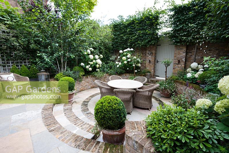 Walpole Gardens: London. View onto circular tile and brick sunken patio with Carpinus betulus, Hydrangea arborescens 'Annabelle',  Erigeron karvinskiansus, Heuchera 'Rave On', Buxus sempervivens, Betula utilis 'Jacquemontii', Pittosporum tobira 'Nanum'