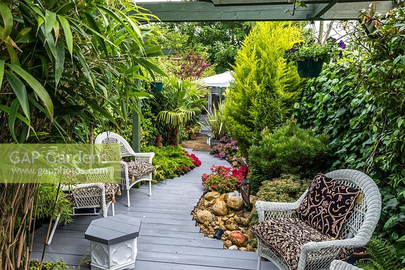 3.7m x 25m contemporary garden. Second, central seating area in shade of pergola, linked to each end by stepped plank path.  Evergreen planting includes golden cypress, Chusan palm and small pine. Flowering azaleas.