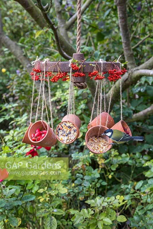 A weathered Wheel bird feeder featuring hanging terracotta pots offering a variety of berries and seeds for the birds, decorated with Pyracantha berries
