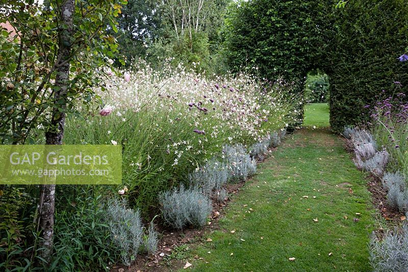 gap gardens les jardins de roquelin meung sur loire large bed of gaura lindheimeri and. Black Bedroom Furniture Sets. Home Design Ideas