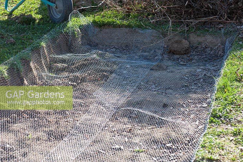 GAP Gardens - Protecting garden from moles and voles - cover the ...