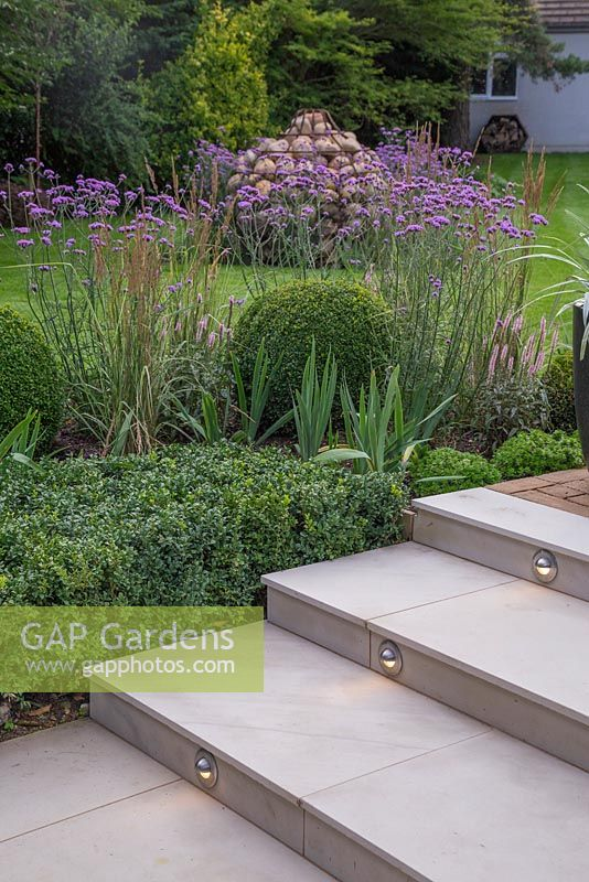 View Of Lighting Feature Built Into Marble Steps, With Border Of Verbena  Bonariensis, Buxus