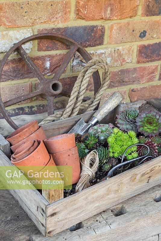 Items required for constructing a Succulent Chandelier. Terracotta pots, trowel, string, scissors, rope, cast iron wheel and Sempervivums