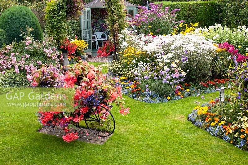 Colourful decorative bicycle holding pots with Begonia and Lobelia on a lawn and mixed beds filled with perennials, shrub,s Rosa and Buddleja. Summerhouse. Manvers Street, Derbyshire NGS, August