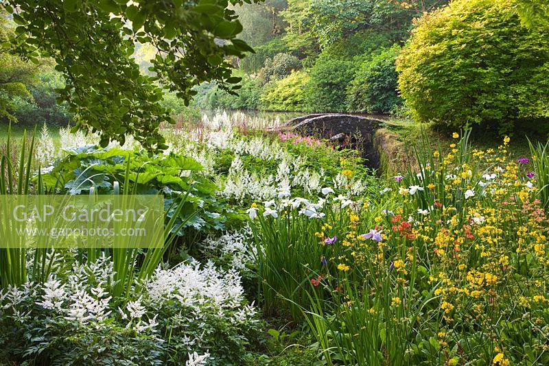 Gap Gardens National Collection Of Ensata Iris Ensata