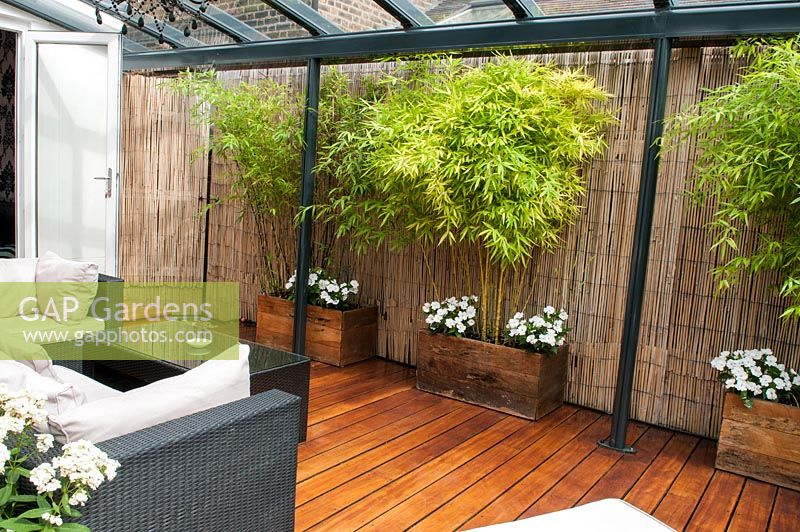 Delicieux Covered Garden Room With Bamboo Screening And Three Troughs Planted With  Phyllostachys Nigra And Aureosuicata And