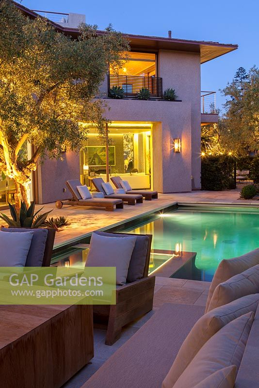 View of modern swimming pool and house with outside seating area sun loungers and mature olive tree at dusk.