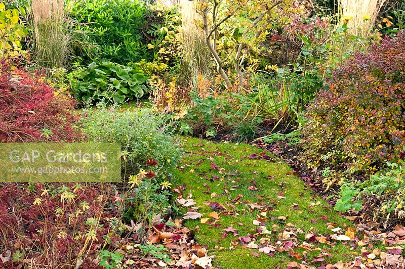 Gap gardens autumn border with mixed planting of for Grasses planting scheme