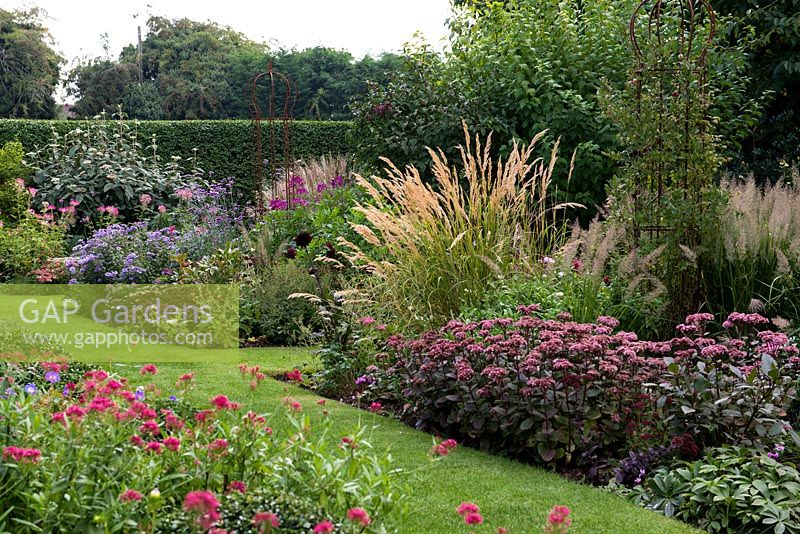 gap gardens a purple and pink late summer border planted. Black Bedroom Furniture Sets. Home Design Ideas