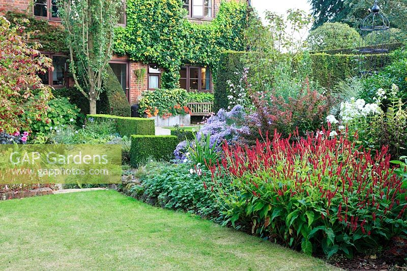 Gap Gardens Autumn Border With Persicaria Amplexicaulis