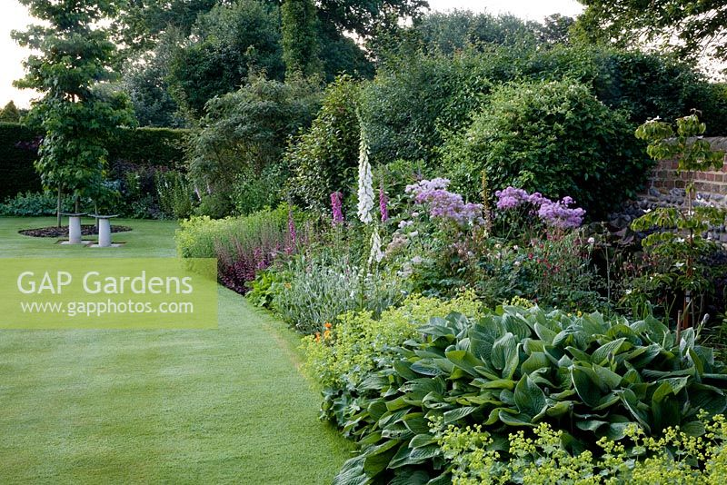 Border And Lawn With Pair Of Seats Plants Including Digitalis Purpurea F Albiflora White