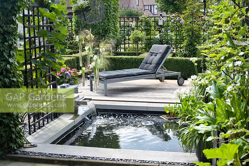 Small rectangular pond with cascade and wooden deck. Agapanthus orientalis White in pot. Family Fabry - Mathijs. Belgium