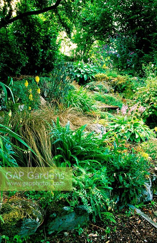 Abriachan. Loch Ness. Invernesshire,  Scotland. The garden is situated on a hillside overlooking loch ness - with planting chosen to integrate with the surrounding environment