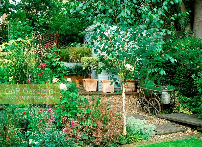 Gap gardens south croxted rd garden small garden with for Garden trees london