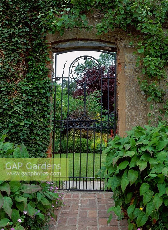 Gap Gardens Wrought Iron Gate Set In An Ivy Covered
