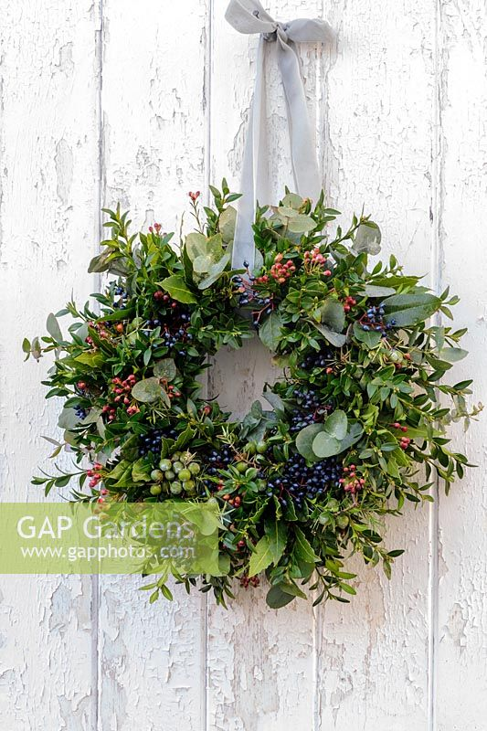 Christmas wreath with buxus, viburnum tinus berries, juniper and eucalpytus
