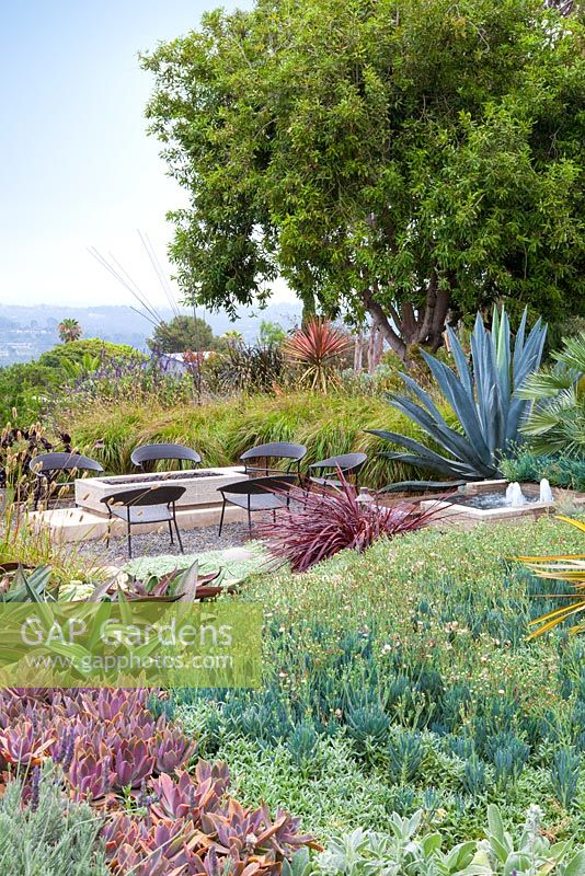 Outside seating area with gas fire pit and concrete contemporary water feature. Debora Carl's garden, Encinitas, California, USA. August.