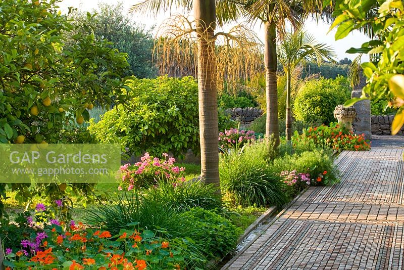 GAP Gardens - Rachel has infused the arabic garden with a delicious ...