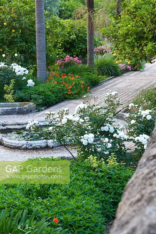 GAP Gardens - The arabic garden is underplanted with flowers which ...
