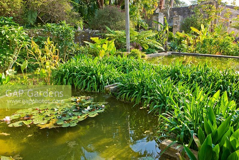 GAP Gardens - Existing pool in the arabic garden, strewn with ...