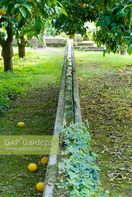 GAP Gardens - A long stone water rill penetrates the heart of the ...