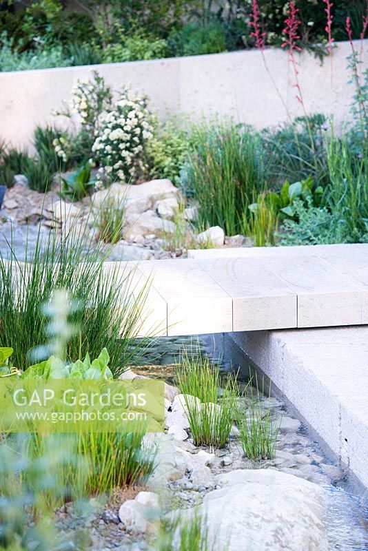 the telegraph garden view of a limestone path over the stream with marginal plants including