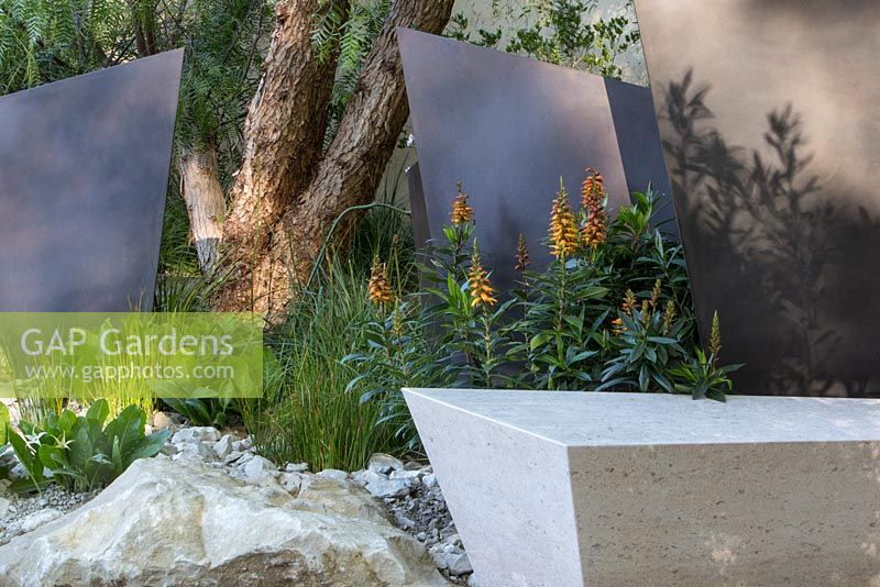 the telegraph garden portugese limestone bench bronze coated fin panel screens isoplexis canariensis
