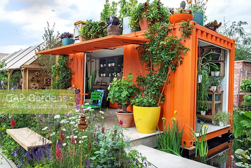 RHS Greening Grey Britain for Health, Happiness and Horticulture. Shipping container converted into a potting shed, containers planted with grape vines, tomatoes, cabbages, cacti and climbing roses, table and chairs on patio and border filled with herbaceous perennial plants with bench. RHS Chelsea Flower Show 2016. Design: Ann-Marie Powell