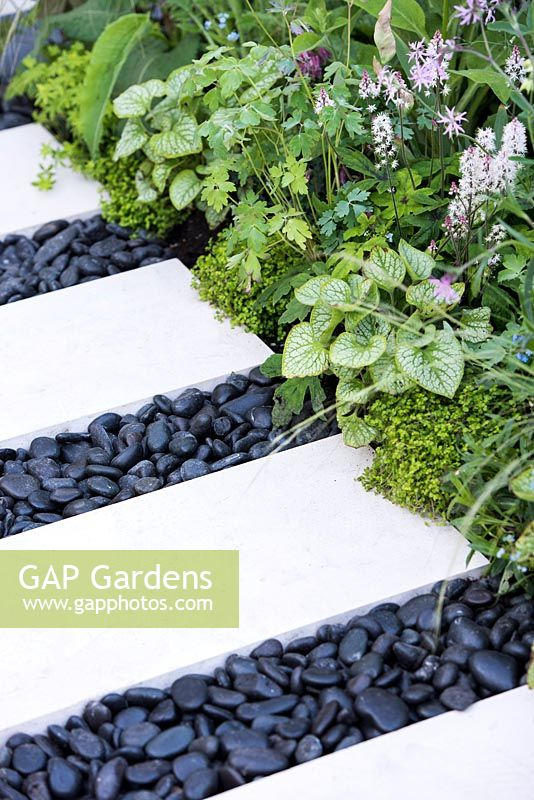 the lg smart garden view of a path made from limestone paving slabs and separated with black oval stones surrounded by tiarella spring symphony