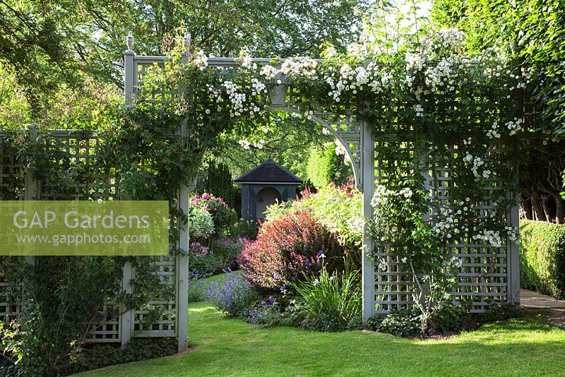 Attrayant Painted Timber Rose Trellis In A Formal Garden With Flowering Rosa  U0027Rambling Rectoru0027,