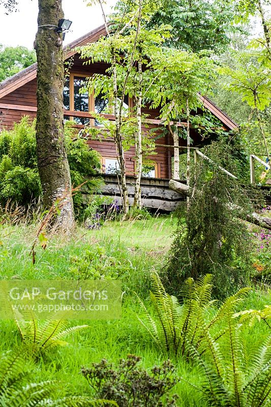 GAP Gardens - Wooden, chalet style house surrounded by unusual and ...