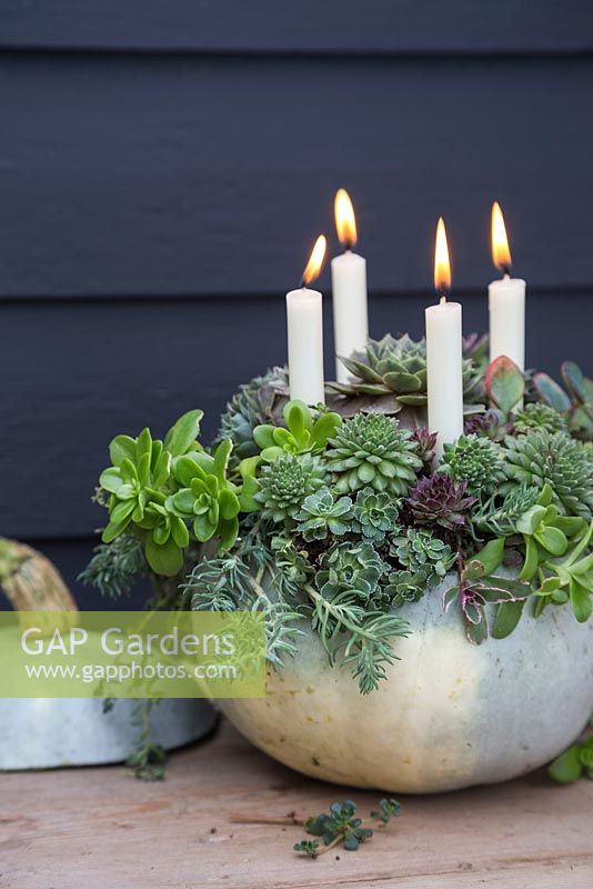 A Pumpkin candle holder planted with Succulents