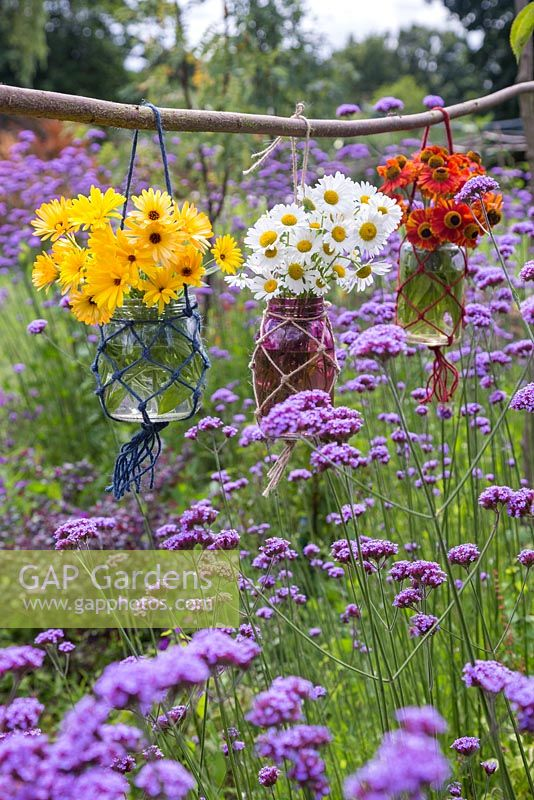 A floral display of glass vases in woven nets, hanging above a cluster of Verbena bonariensis