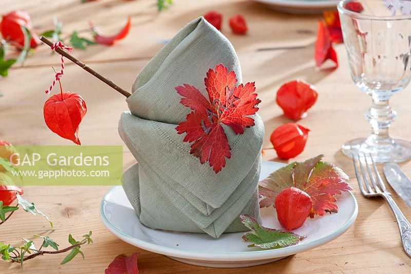 Physalis table decoration: napkin with leaf of Geranium used as place card.